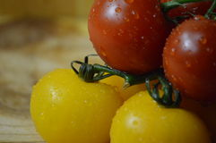 Tomatoes on the vine Royalty Free Stock Images