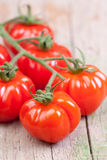 Tomatoes on vine Royalty Free Stock Image