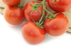 Tomatoes on the vine Stock Photos