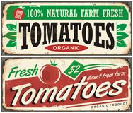Tomatoes vintage promotional sign design Stock Images