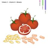 Tomatoes with Vitamin C and Vitamin A Royalty Free Stock Photos