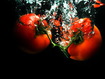 Tomatoes in water Royalty Free Stock Photos