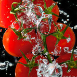 Tomatoes in the water with air bubbles Stock Photo