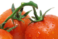 Tomatoes with water droplets Royalty Free Stock Photos