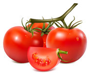 Tomatoes with water drops. Stock Photography