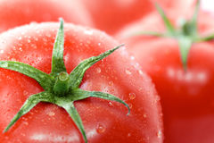 Tomatoes with water drops Royalty Free Stock Photography