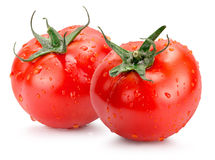 Tomatoes with water drops isolated on the white background Stock Image