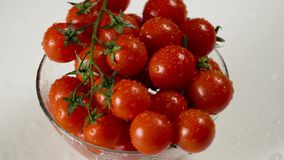 Tomatoes in a glass bowl stock video
