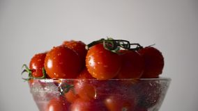Tomatoes in a glass bowl. Tomatoes with water drops and stems in a glassware, circular rotation. Directional lighting. Close-up. Horizontal plane stock footage
