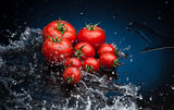 Tomatoes in water Royalty Free Stock Images