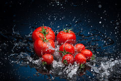 Tomatoes in water Stock Photos