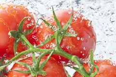 Tomatoes Water Spray Fresh Food Royalty Free Stock Photos