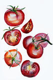 Tomatoes watercolor Stock Image