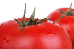 Tomatoes on white. Red tomatoes on white, closed-up stock image