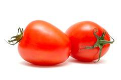 Tomatoes on white background Stock Photos