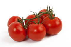 Tomatoes on White Background. Fresh Tomatoes on White Isolated Background Royalty Free Stock Images