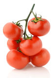 Tomatoes. On a white background Stock Images