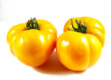 Tomatoes on white background Royalty Free Stock Photography