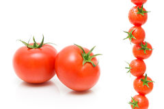 Tomatoes on a white background close-up Stock Image