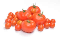 Tomatoes on white background royalty free stock photos