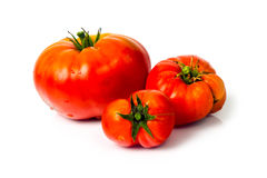 Tomatoes on a white background Royalty Free Stock Image