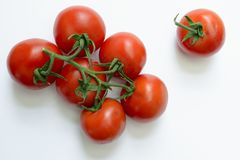 Tomatoes in white background. Organic tomatoes in white background royalty free stock photo
