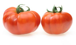 Tomatoes in a white background Royalty Free Stock Image