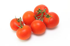 Tomatoes in a white background Stock Photography