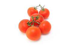Tomatoes in a white background Royalty Free Stock Photography