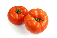 Tomatoes on white background Stock Images
