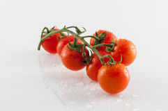 Tomatoes on white background. Small tomatoes on white background with reflections Stock Photography