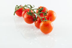 Tomatoes on white background. Small tomatoes on white background with reflections Royalty Free Stock Images