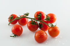 Tomatoes on white background. Small tomatoes on white background with reflections Royalty Free Stock Photos