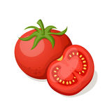 Tomatoes on a white background. Royalty Free Stock Images