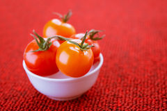 Tomatoes in white plate Royalty Free Stock Image