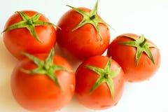 Tomatoes on white. Tomato with drops stock photos