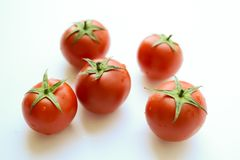 Tomatoes on white. Tomato with drops royalty free stock image