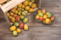 Tomatoes on a wooden background Royalty Free Stock Photography