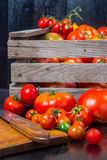 Tomatoes in a wooden box Stock Image