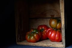 Tomatoes in a wooden box royalty free stock photo