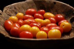 Tomatoes on a wooden plate. A glossy red, or occasionally yellow, pulpy edible fruit that is typically eaten as a vegetable or in salad Royalty Free Stock Photos
