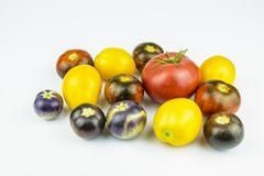 Tomatoes:yellow, pink, blue, black and red color on a white back. Tomatoes of different colors isolated on a white background stock image