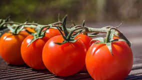 Tomatoo. Red tomatoos on the table Royalty Free Stock Photography