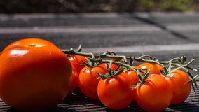 Tomatoo. Red tomatoos on the table Royalty Free Stock Photo