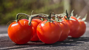 Tomatoo. Red tomatoos on the table Royalty Free Stock Image