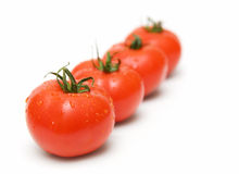 Tomatos Royalty Free Stock Photos