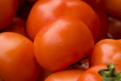 Tomatos. Closeup of a stack of tomatoes. Shallow depth of field. Focus on the fruit located in the center of the picture Stock Photography