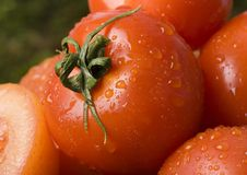 Tomatos Royalty Free Stock Photo