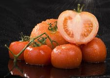 Tomatos. Tomato - is a cultivated plant. It is commonly cultivated because of its juicy fruits, which are full of vitamins, nutritions and mineral salts Royalty Free Stock Images