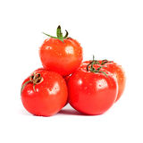 Tomatos Stock Image